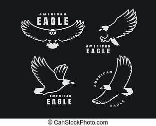 Set of logos. American eagle in flight on a dark background. Vector illustration.