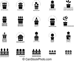 Set of logotypes for houseplants store