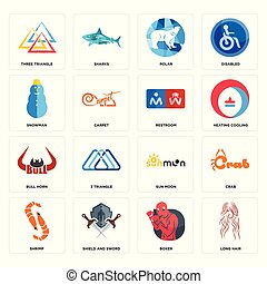 Set of long hair, boxer, shrimp, sun moon, bull horn, restroom, snowman, polar, three triangle icons