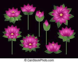 Set of lotus flowers
