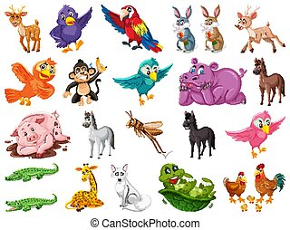 Set of many cute animals on white background