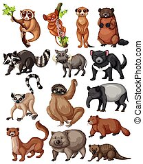 Set of many wild animals