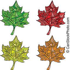 set of maple leaves