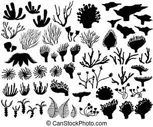 Set of marine life Silhouettes