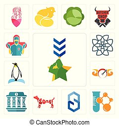 Set of military, chemical company, s hexagon, year the dog, bank, speedometer, penguin, celtic knot, surgeon icons