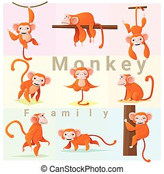 Set of Monkey family