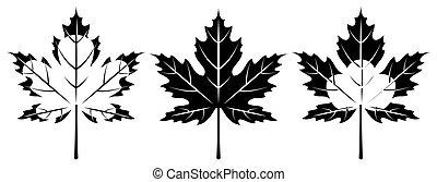 Set of monochrome maple leaves. Vector illustration