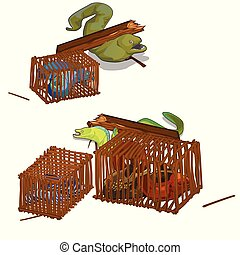 Set of moray eels caught in the wooden cage isolated on white background. Vector cartoon close-up illustration.