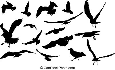 Set of multiform flying seagulls.