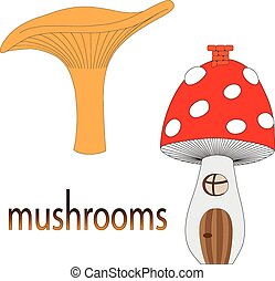 Set of mushrooms isolated on white background