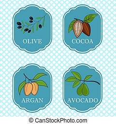 Set of natural ingredients and oils for beauty and cosmetics - packaging design templates and emblems - olive, avocado, cocoa and argan. Vector illustration.