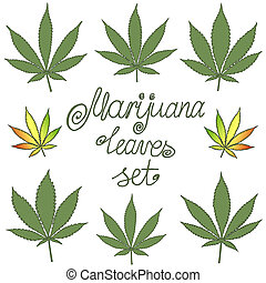 Set of natural marijuana leaves