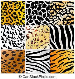 wild animals skin patterns - Set of nine different wild...