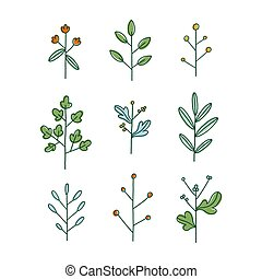 Set of nine simple hand drawn floral branches, vector illustration