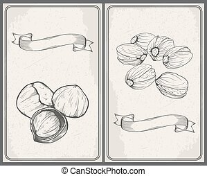 Set of nuts: Hazelnuts and Pistachios. Hand drawn sketches vector illustration in vintage style.