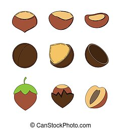 Set of nuts in cartoon style.