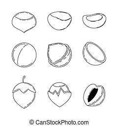Set of nuts in outline style.
