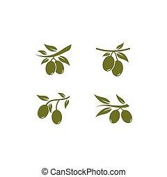 set of Olive logo vector illustration