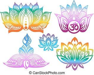 Ornamental color Lotus flowers