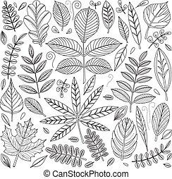 Set of outline leaves