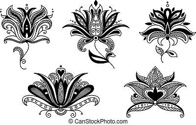 Set of paisley floral elements