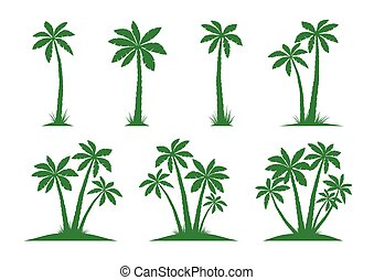 Set of Palm Trees. Vector illustration on white background.