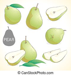 Set of pears with leaf in various styles