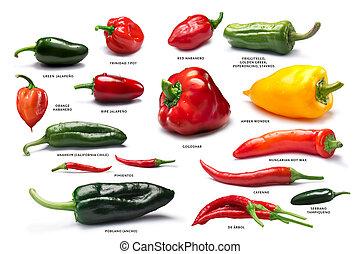 Set of pepper fruits, paths