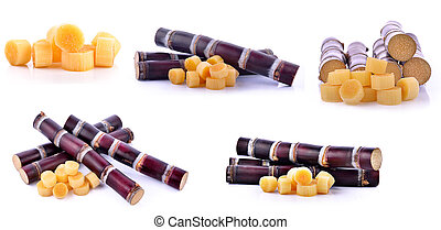 set of Pieces of sugarcane over white background;brow;sweet for food.