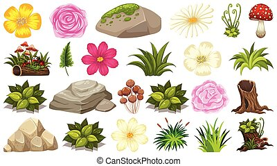 Set of plant and nature elements on white