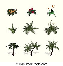 Set of plants in isometric style. Cartoon tropical tree and fern on white background. Isolated image of jungles palm and bush