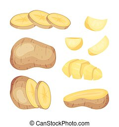Set of potatoes. Vector illustration on white background.