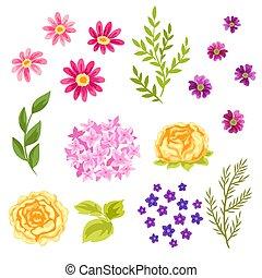 Set of pretty flowers.
