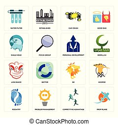 Set of prop plane, competitive advantage, podiatry, de, lion dance, personal development, eagle head, car crash, water filter icons