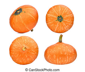 set of pumpkin isolated on white background