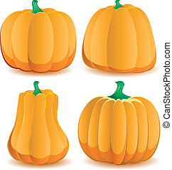 Set of pumpkins isolated on white, part 2, vector illustration