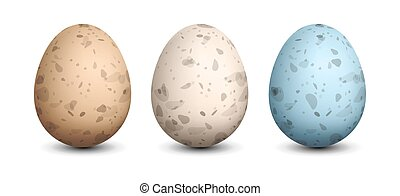 Set of Quail Eggs