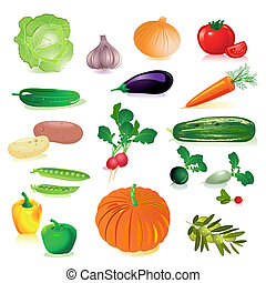 set of raw vegetables