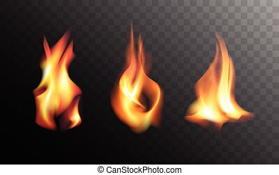 Realistic Fire Flames on a Transparent Background.