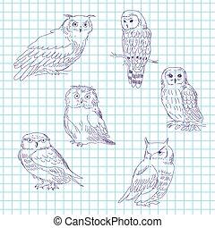Set of realistic owls on a tetrad sheet