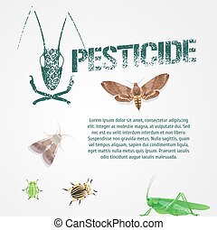 Set of realistic pest insects and template bodycopy vector illustration
