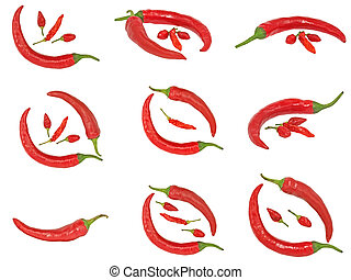 Set of red hot chile pepper isolated on a white background.