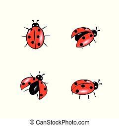 set of red ladybug isolated on white