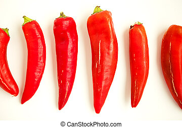 Set of red peppers on the white background