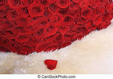 red roses on white fur