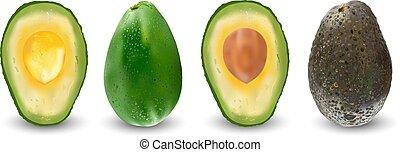 Set of ripe realistic fruits of avocado. Vector illustration. Exotic evergreen fruit plants. Isolation on a white background