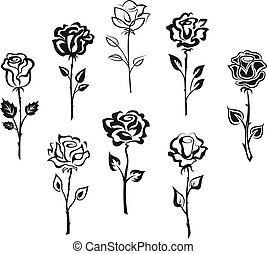 Set of rose flowers isolated on white background for holiday design