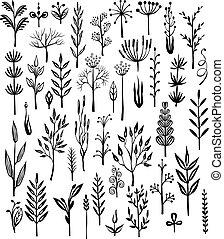 Set of rustic decorative plants