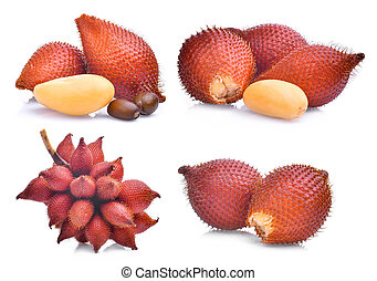 set of salak fruit, salacca zalacca isolated on white background