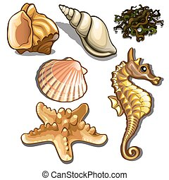 Set of sea animals isolated on white background. Seafood. Vector illustration.